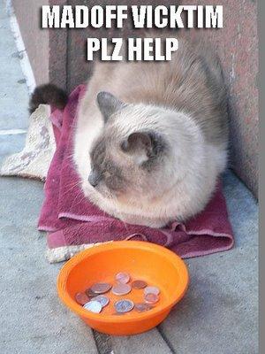 Cat madoff victim